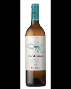 Mar De Vinas 2020